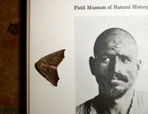 museum-of-natl-history.jpg